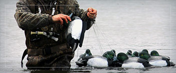 Waterfowl Gear